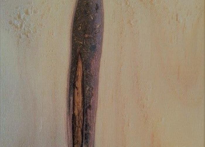 encased-bark